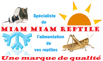 MIAM MIAM REPTILE AND CO